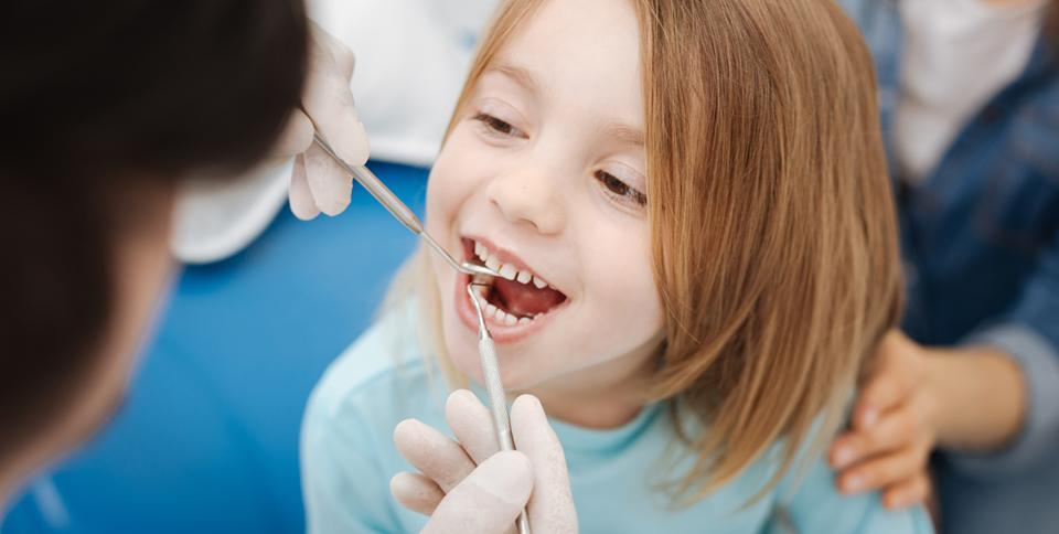 Cultivating Solutions in Oral Health